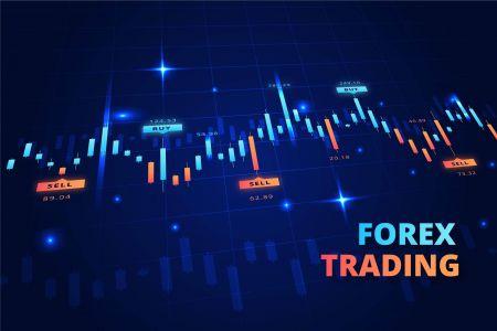 Что такое торговые системы Forex и как они работают в HotForex