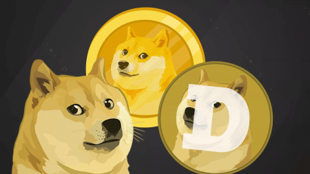 Should you invest in Dogecoin's copycat in StormGain?